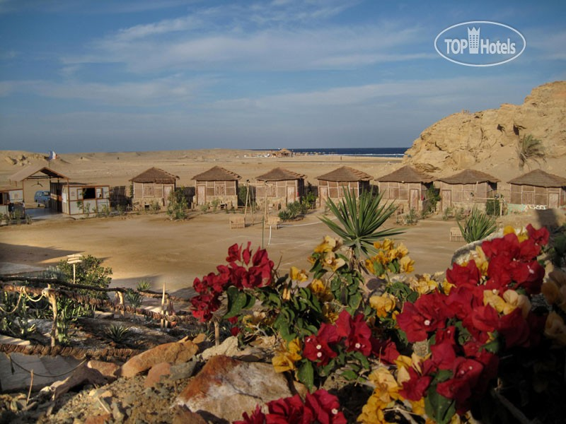 Roots Luxury Camp Redsea, фото 4