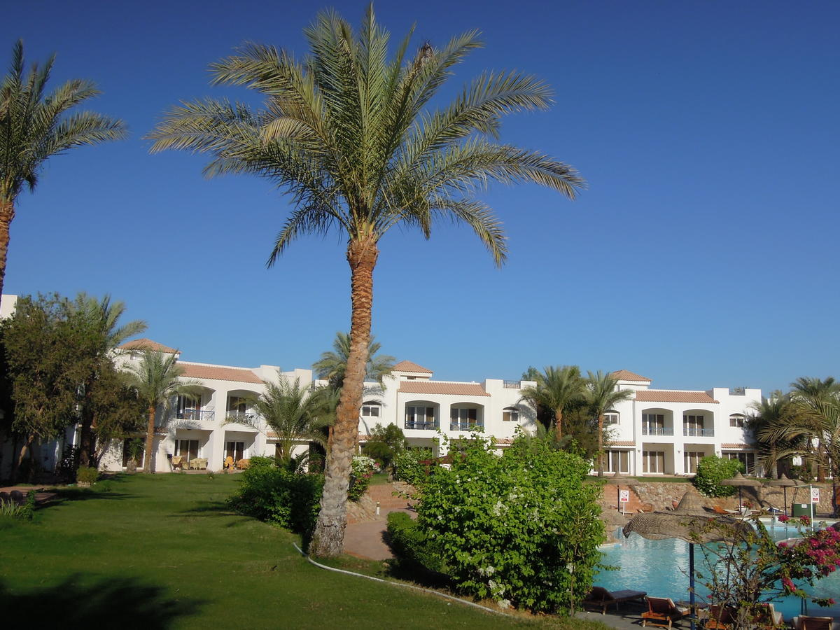 First Class Naama Bay Apartments, фото 2